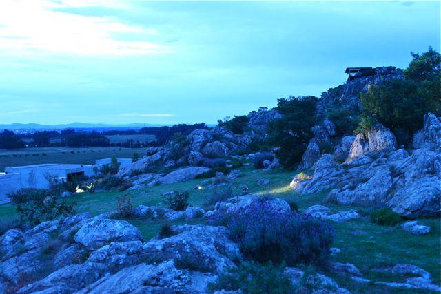 Terreno rochoso com muita aridez e vegetação inóspita