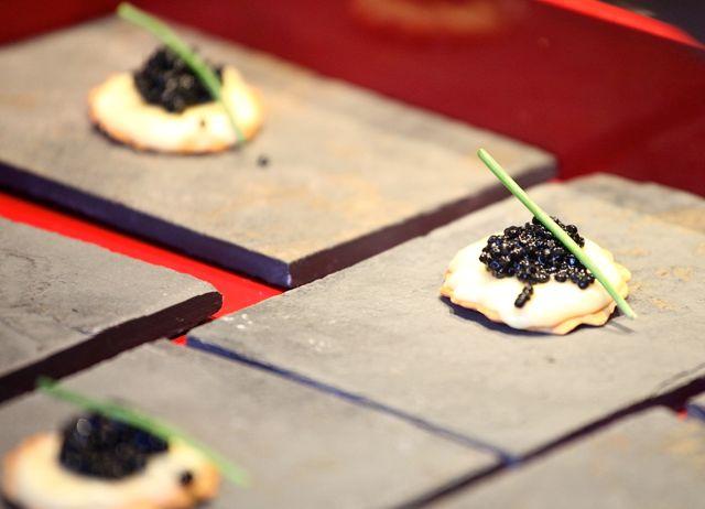 Pré-dessert Lâmina de Chocolate branco com Caviar