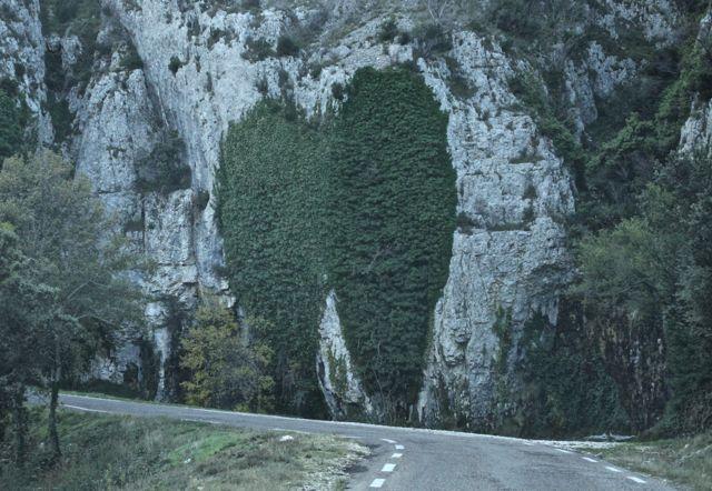 Mãe natureza! Dois corações se entrelaçando! Basta querer ver! Na estrada chegando em Gordes