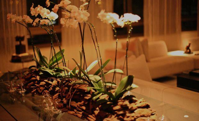 segundona flores