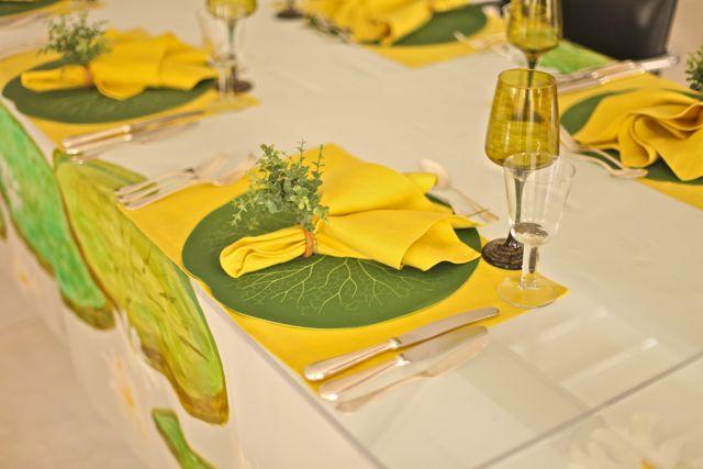 Seg top Verde:amarelo 8