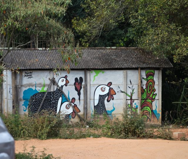 Bichinho casa pintada