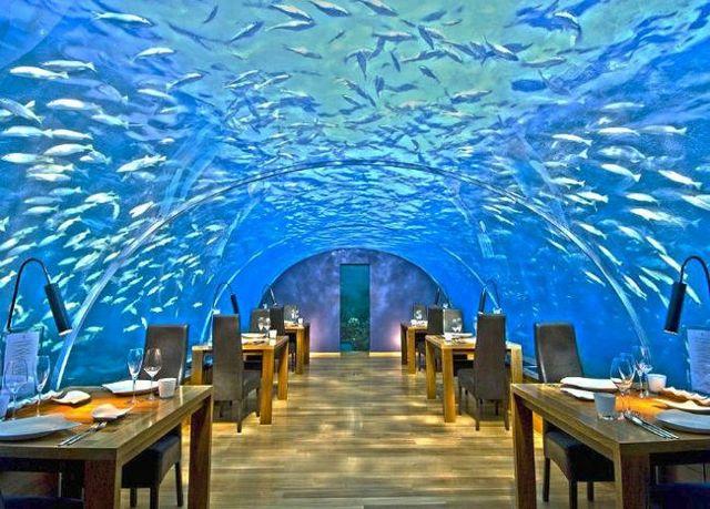 25. Ithaa Undersea Restaurant (Maldivas) Fonte: ealuxe.com