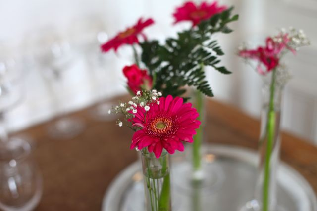 Em compensação flor
