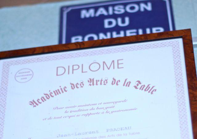 SURPRISE diploma