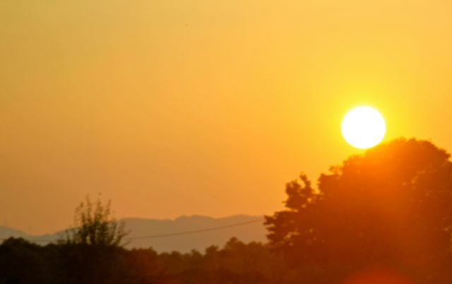 El Celer sol 0