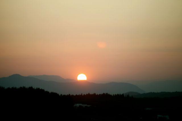 El Celer sol 1