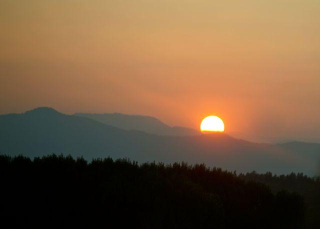 El Celer sol 2