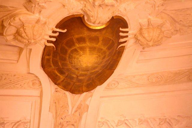 Monaco tartaruga
