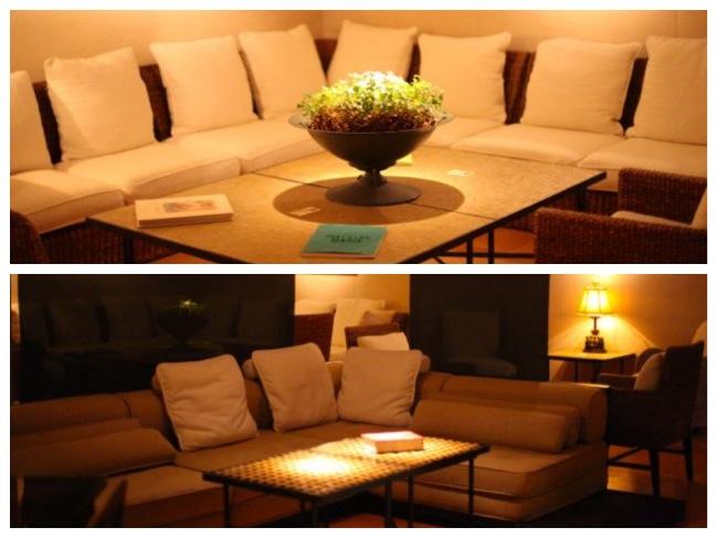 alva sofa_Fotor_Collage