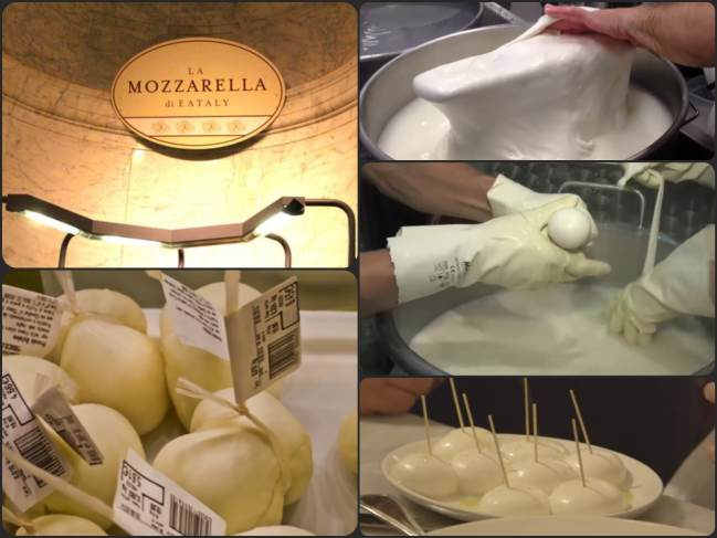 Fábrica de mozzarella