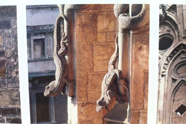 """""""Olhando para o futuro, a lição de Gaudí foi procurar inspiração na Natureza... A Natureza nunca passa de moda""""  MASSÓ, Juan B."""