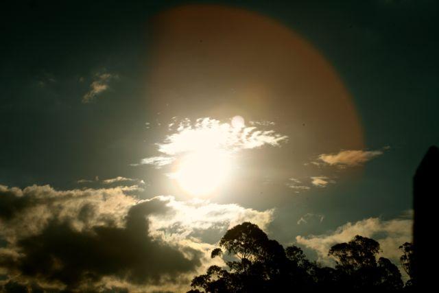 BOTANIQUE Por do sol