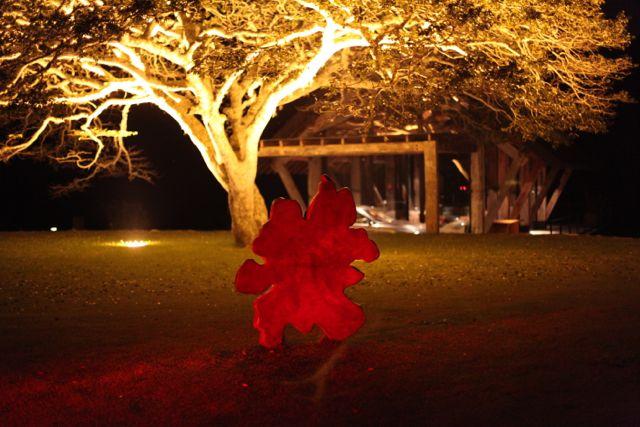 BOTANIQUE escultura a noite