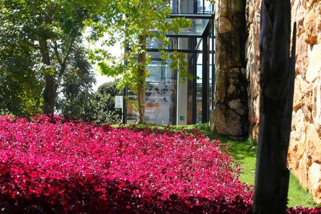 BOTANIQUE jardim 2