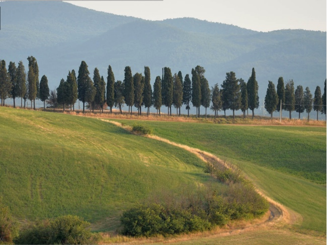 Boceli Toscana
