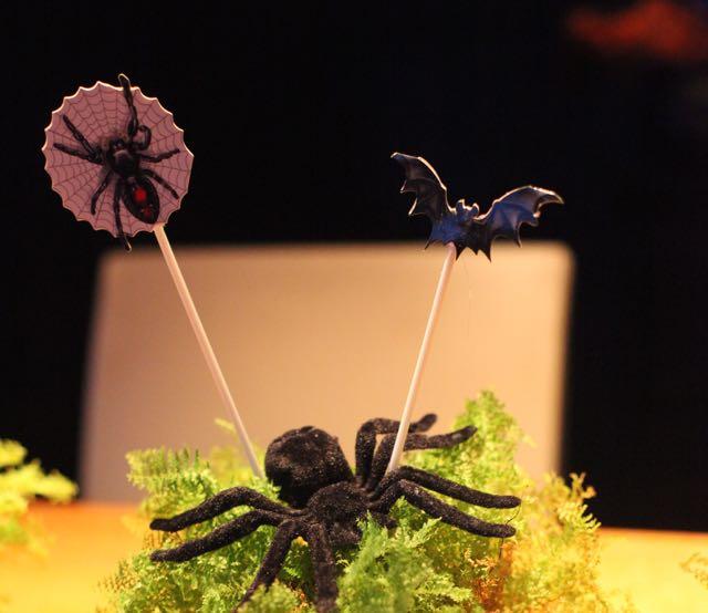 bruxa-aranha