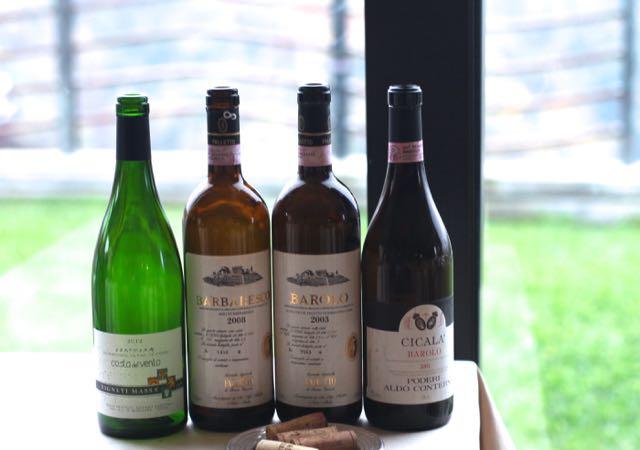 ciau-del-tornavento vinhos
